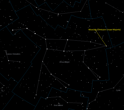 Muscida Location in Ursa Major