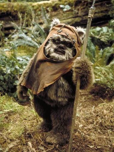 Wicket from Star Wars played by Warwick Davis.