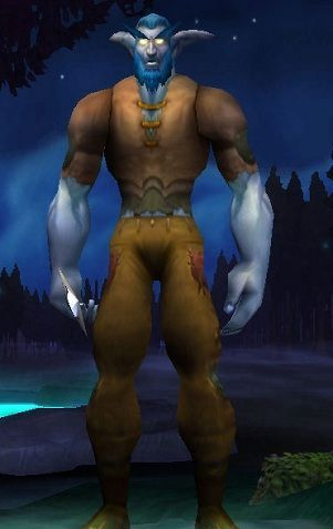 Male Night Elf