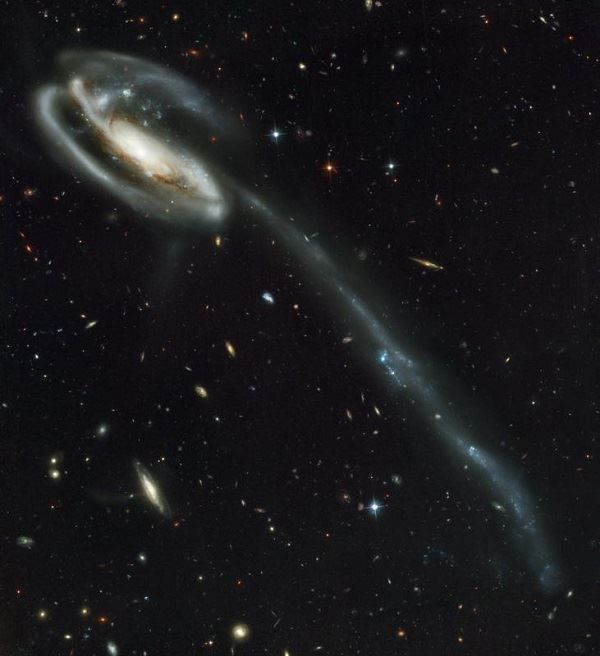 Tadpole Galaxy Barred Spiral Galaxy in Draco
